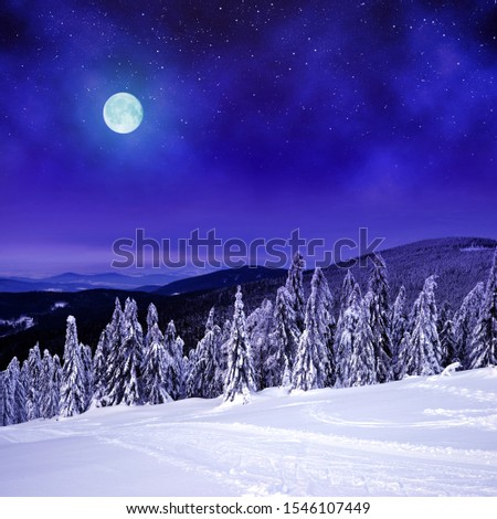 Snowy winter landscape in night. View from mount Pancir in the National park Sumava, Czech Republic. #1546107449