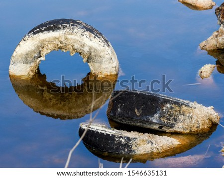 Pollution and pollution accumulate in a lagoon on the outskirts of Madrid, Spain #1546635131