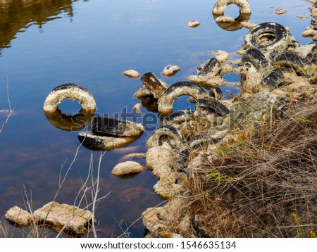 Pollution and pollution accumulate in a lagoon on the outskirts of Madrid, Spain #1546635134