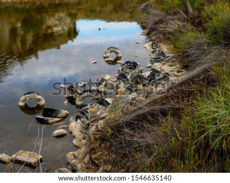 Pollution and pollution accumulate in a lagoon on the outskirts of Madrid, Spain #1546635140