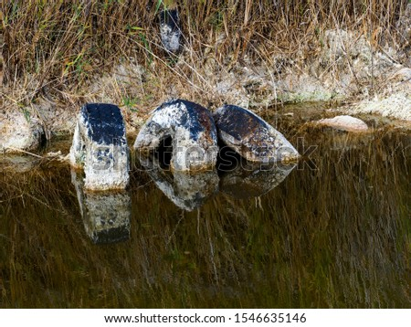 Pollution and pollution accumulate in a lagoon on the outskirts of Madrid, Spain #1546635146