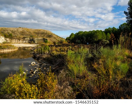 Pollution and pollution accumulate in a lagoon on the outskirts of Madrid, Spain #1546635152