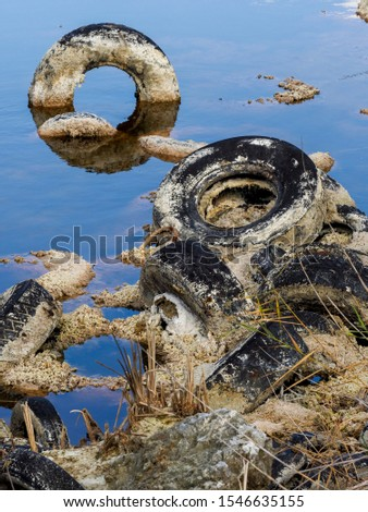 Pollution and pollution accumulate in a lagoon on the outskirts of Madrid, Spain #1546635155