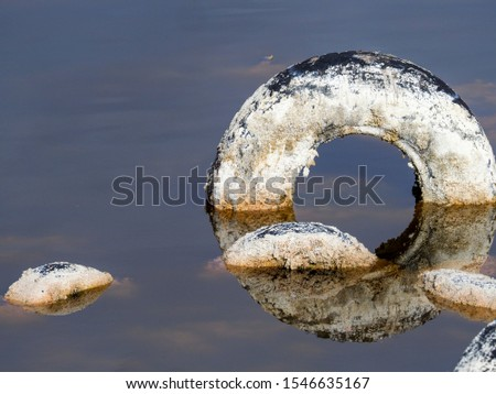Pollution and pollution accumulate in a lagoon on the outskirts of Madrid, Spain #1546635167