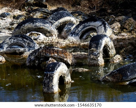 Pollution and pollution accumulate in a lagoon on the outskirts of Madrid, Spain #1546635170