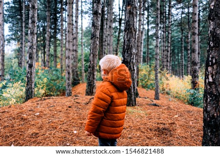 child in the forest looking at the nature in a green, orange and brown pallet colors #1546821488