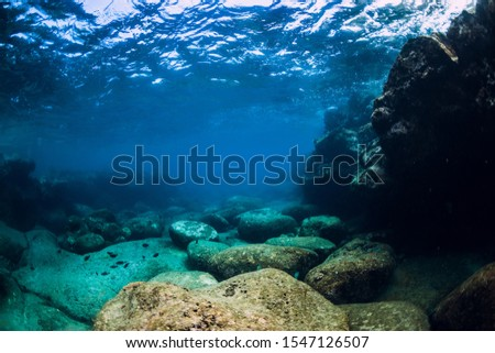 Tranquil underwater scene with copy space. Tropical transparent ocean with rock and stones #1547126507