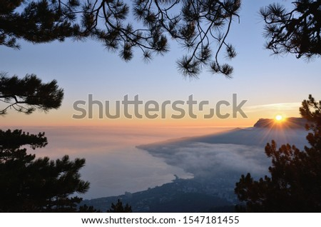 Beautiful view from above, through pine branches, sea coast at sunset. The red radiant sun against the blue sky on the horizon over Mount Ai-Petri. Light fog over the Yalta city in Crimea in January. #1547181455