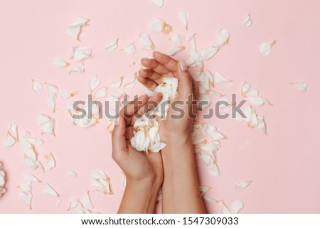 Woman's hands holding white petals, many petals on the pink background. #1547309033