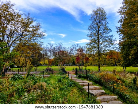 This picture was taken at Welles Park in Chicago.