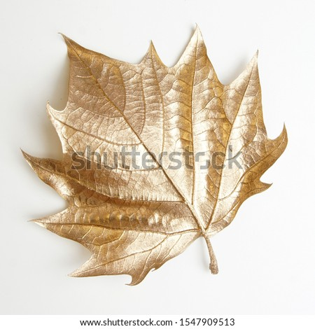 golden leaf design elements. Decoration elements for invitation, wedding cards, valentines day, greeting cards. Christmas decor Isolated on white background.                                 #1547909513
