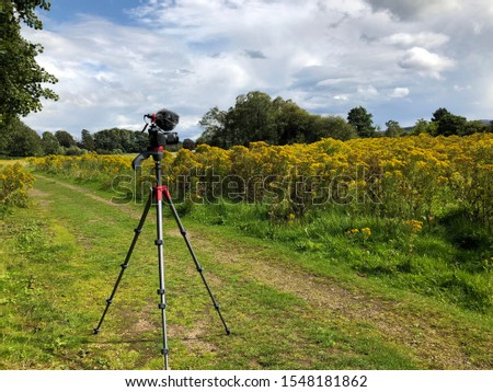 Camera with mic stands on a tripod in the middle of a garden. during photography lesson. near Loch Kinord, Aboyne, Aberdeenshire.