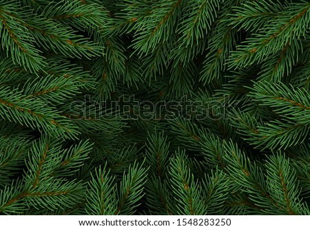 Christmas tree branches. Festive Xmas border of green branch of pine. Pattern pine branches, spruce branch. Realistic design decoration elements. Vector illustration #1548283250