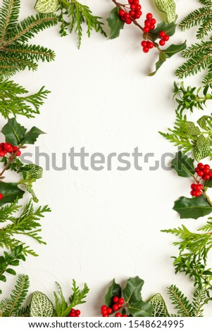 Christmas background with branches of fir tree, evergreens and holly with red berries on white. Winter nature concept. Flat lay, copy space. #1548624995