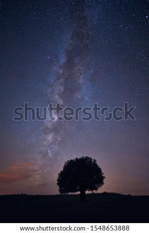 Milky way, stars and tree on field. Astrophotography shot was taken in Nallihan province of Ankara, Turkey #1548653888