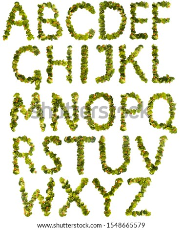 Full set of letters. Healthy lifestyle and nutrition. English alphabet. Text from the products. Broccoli, asparagus, carrots. Designer font. Vegetable Font. #1548665579