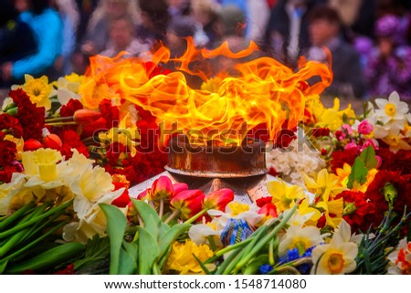Flowers laid by the eternal flame. Victory Day. The memory of the dead soldiers. Tomb of the Unknown Soldier #1548714080