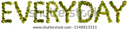 everyday. Healthy lifestyle and nutrition. English alphabet. Text from the products. Broccoli, asparagus, carrots. Designer font. Vegetable Font. #1548813311