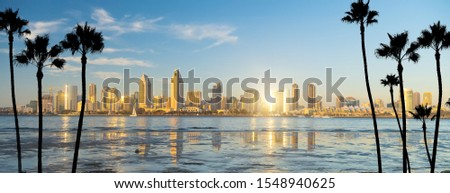 Downtown San Diego skyline in California, USA at sunset
