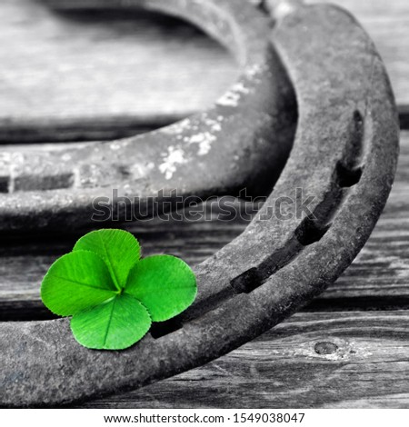 Horseshoe with lucky clover on wood background #1549038047