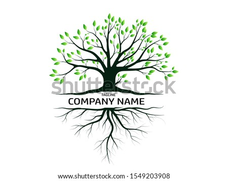Trees and root with green leaves look beautiful and refreshing.Tree and roots LOGO style. #1549203908