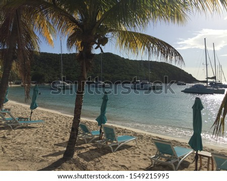 Carnash Bay Tobago Cays Saint Vincent and The Grenadines #1549215995