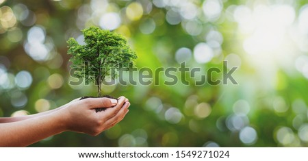 Tree planting on volunteer family's hands for eco friendly and corporate social responsibility campaign concept #1549271024