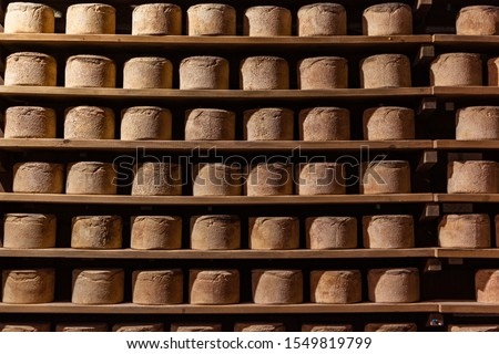 The Castelmagno is the King of Cheeses. This picture comes from the caves of one of the highest producers on the piedmont Alps, at 1700 meters heigh. Possibly, the best Castelmagno at all.