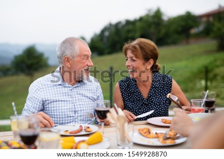 Senior couple sitting a t the table outdoors on family garden barbecue. #1549928870