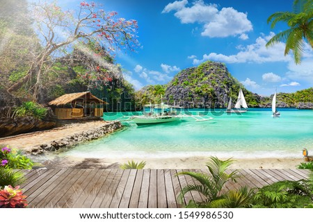 beautiful  natural beach view with trees and parquet wallpaper  Royalty-Free Stock Photo #1549986530