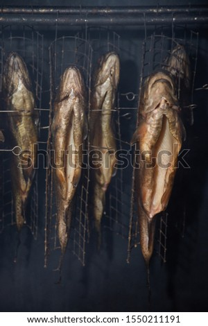 Fresh smoked fish in a smokehouse: carps, trouts #1550211191