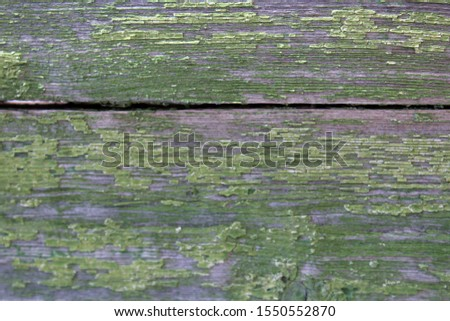 Texture of worn, old surface made of natural wooden boards, green color, close-up, as a background. #1550552870