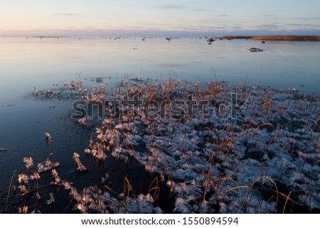 Sunset-colored winter coastl landscape with the freezing Baltic Sea in Estonian seacoast #1550894594
