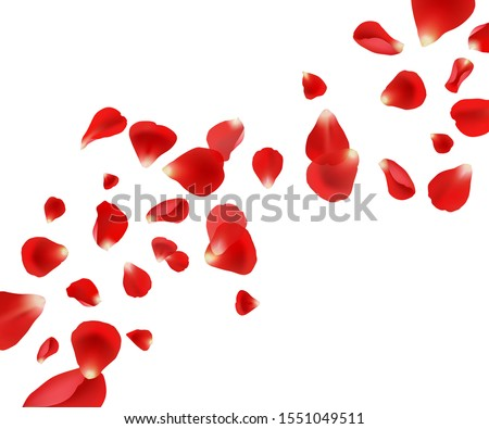 Petal background. Flying rose petals wedding beautiful template design for cards invitation vector pictures