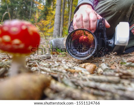 Mushroom photographer take a picture of mushroom fly agaric red and also make mushroom reflection in lens filter. Guy photographing mushroom with macro lens