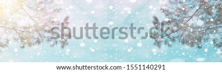 Pine snowflakes and ice crystals on blue sky – winter bokeh snowy background panorama banner long #1551140291