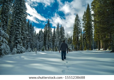 Man walking into snowy meadow #1551238688