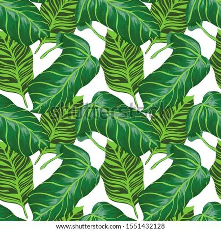 Marine Monstera Foliage Vector Seamless Pattern. Azure Retro Jungle Print Island Style. Mud Tree Fabric Backdrop. Air Palm Leaves Print #1551432128