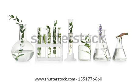 Test tubes and other laboratory glassware with different plants on white background Royalty-Free Stock Photo #1551776660