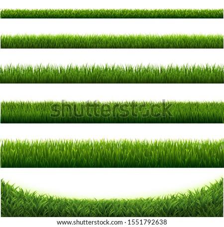 Big Set Green Grass Borders White Background, Vector Illustration