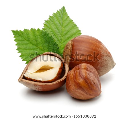Group of hazelnuts with green leaves isolated on white background #1551838892