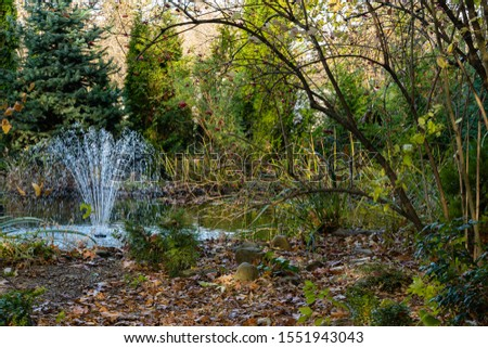 Magic pond with cascading fountain on emerald surface of water on blurry background of evergreens. Selective focus. Autumn landscape in evergreen garden. Nature concept for design. #1551943043