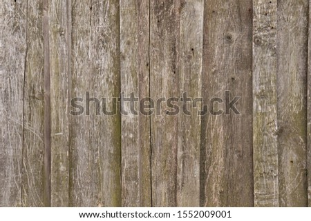 Wooden old rough rough boards. #1552009001