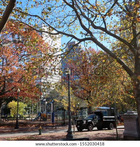 Fall trees and buildings in Providence #1552030418