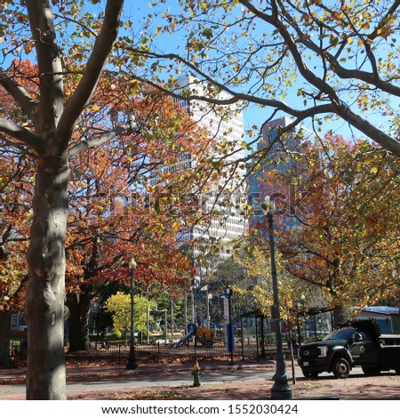Fall trees and buildings in Providence #1552030424