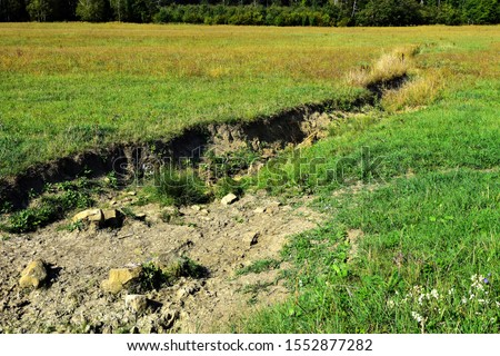 Field erosion on grass slope with erosive grooves made by water, soil erosion or destruction. #1552877282