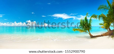 Beautiful beach with white sand, turquoise ocean, blue sky with clouds and palm tree over the water on a Sunny day. Maldives, perfect tropical landscape, ultra wide format. Royalty-Free Stock Photo #1552900790