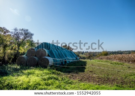 Straw bales and silage bales on the field #1552942055