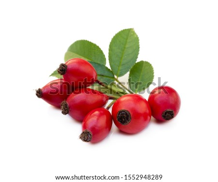 Ripe rose hip isolated on white background #1552948289