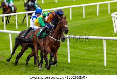 Competing race horses and jockeys sprinting towards the finish line #1552952507